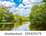 Small photo of Florida wetland, Airboat ride at Everglades National Park in USA. Popular place for tourists, wild nature and animals.