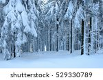 winter landscape  spruce tree... | Shutterstock . vector #529330789