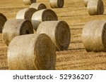 bales of straw in summer - stock photo
