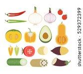 vegetable vector illustration... | Shutterstock .eps vector #529372399