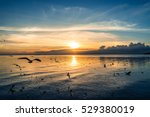 beautiful nature of sunset over ... | Shutterstock . vector #529380019