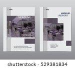 cover design brochures  vector... | Shutterstock .eps vector #529381834