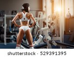 crossfit woman standing with... | Shutterstock . vector #529391395