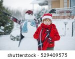 boy in the winter in the park ... | Shutterstock . vector #529409575