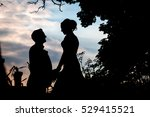 silhouette of a man and woman... | Shutterstock . vector #529415521