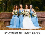 bride with bridesmaids in the... | Shutterstock . vector #529415791