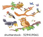 Cute Woodland Animals. Forest...