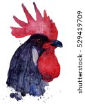 rooster  watercolor... | Shutterstock . vector #529419709