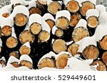 Logs Stacked Under The Snow In...