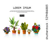 home plant and flowers vector... | Shutterstock .eps vector #529486885