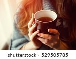 Stock photo female hands holding a mug of hot tea morning young woman on the couch and with tea cup on the 529505785