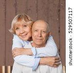 latin american and hispanic... | Shutterstock . vector #529507117