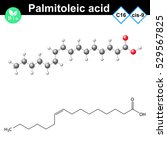 palmitoleic fatty acid... | Shutterstock .eps vector #529567825