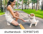 Stock photo young woman and dog shaking hands at summer park alley human and pets best friends concept 529587145