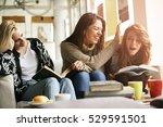 best friends having fun ... | Shutterstock . vector #529591501