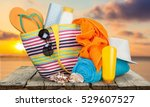 vacations. | Shutterstock . vector #529607527