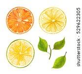 hand drawn watercolor marker... | Shutterstock . vector #529622305