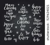wonderful handwritten christmas ... | Shutterstock .eps vector #529624021