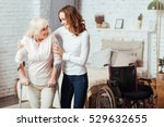 pleasant caring woman helping... | Shutterstock . vector #529632655