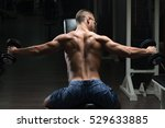handsome man working out back... | Shutterstock . vector #529633885