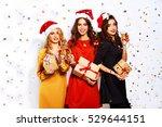 portrait of three happy young... | Shutterstock . vector #529644151