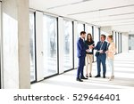 full length of business people... | Shutterstock . vector #529646401