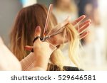 picture showing hairdresser... | Shutterstock . vector #529646581