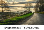 hadrian's wall at banks east... | Shutterstock . vector #529660981