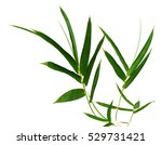 green bamboo leaves isolated on ... | Shutterstock . vector #529731421