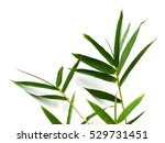 bamboo leaves isolated on white ... | Shutterstock . vector #529731451