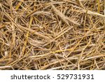 view to straw closeup as... | Shutterstock . vector #529731931