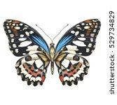 Stock photo sky butterfly in a wildlife by watercolor style isolated wild freedom butterfly with a flying 529734829
