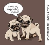 Stock vector friends pugs puppies together vector illustration 529817449