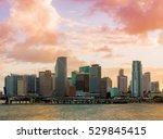 downtown miami  florida  usa ... | Shutterstock . vector #529845415