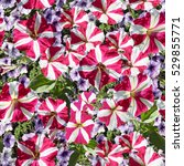 Small photo of Allover Floral pattern art collage realistic flowers petunias on a green grass meadow. Artistic design photo collage seamless with colorful flourish background. Red flowers blossom backdrop