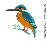 kingfisher vector. predatory... | Shutterstock .eps vector #529883965
