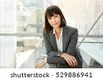 portrait of successful business ... | Shutterstock . vector #529886941