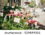 flowers close up view ... | Shutterstock . vector #529899301