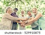 group of senior retirement... | Shutterstock . vector #529910875