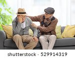 senior sitting on a sofa and... | Shutterstock . vector #529914319