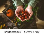 organic vegetables on wood.... | Shutterstock . vector #529914709