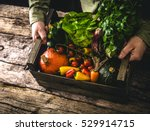 organic vegetables on wood.... | Shutterstock . vector #529914715