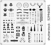 vintage vector design elements... | Shutterstock .eps vector #529960891