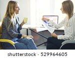young journalist making... | Shutterstock . vector #529964605