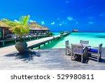 white tropical beach in... | Shutterstock . vector #529980811