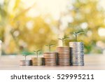 coin and green plant in wood...   Shutterstock . vector #529995211