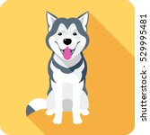 Stock vector vector dog alaskan malamute breed sitting icon flat design 529995481