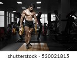 muscular athletic bodybuilder... | Shutterstock . vector #530021815