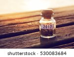 coin in piggy bank with 2017 on ...   Shutterstock . vector #530083684