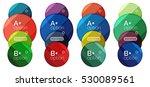 set of round option diagram... | Shutterstock .eps vector #530089561